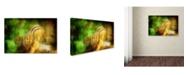 "Trademark Global Lois Bryan 'Going Nuts' Canvas Art - 47"" x 30"""