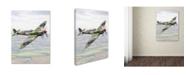 """Trademark Global The Macneil Studio 'Spitfire' Canvas Art - 24"""" x 32"""""""