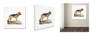 "Trademark Global The Macneil Studio 'German Shepard' Canvas Art - 24"" x 24"""