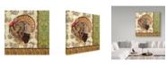 "Trademark Global Jean Plout 'Tom Turkey' Canvas Art - 35"" x 35"""