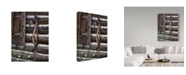 "Trademark Global Jeff Tift 'Barn Swallows' Canvas Art - 35"" x 47"""