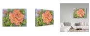 "Trademark Global Joanne Porter 'Peach Blush Rose' Canvas Art - 35"" x 47"""