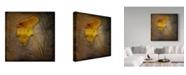 "Trademark Global John W. Golden 'Gingko Brown' Canvas Art - 24"" x 24"""