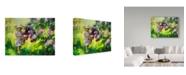 "Trademark Global Steve Henderson 'Lilac Festival' Canvas Art - 24"" x 32"""