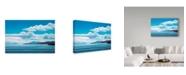 "Trademark Global Ron Parker 'Blue Day' Canvas Art - 30"" x 47"""