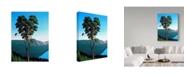 "Trademark Global Ron Parker 'Hillside Arbutus' Canvas Art - 24"" x 32"""