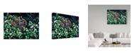 """Trademark Global Wilhelm Goebel 'In Clover' Canvas Art - 24"""" x 32"""""""