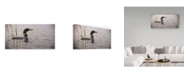 "Trademark Global Wilhelm Goebel 'Emerging Loon' Canvas Art - 24"" x 47"""