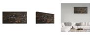 "Trademark Global Wilhelm Goebel 'Pond Ducks' Canvas Art - 24"" x 47"""