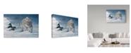 "Trademark Global Wilhelm Goebel 'Stalking The Storm' Canvas Art - 30"" x 47"""