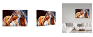 "Trademark Global Marcia Baldwin 'Mohican Indian War Horse' Canvas Art - 32"" x 22"""
