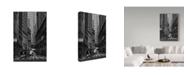 """Trademark Global Jason Matias 'Downtown Bw' Canvas Art - 30"""" x 47"""""""