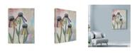 "Trademark Global Let Your Art Soar 'Wild Daisies' Canvas Art - 35"" x 47"""