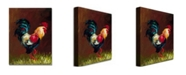 """Trademark Global Rio 'Rooster' Canvas Art - 47"""" x 35"""""""