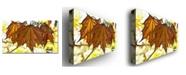 "Trademark Global Kathie McCurdy 'Maple Leaves' Canvas Art - 24"" x 14"""