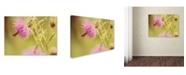 "Trademark Global Lois Bryan 'Skipper On Pink Thistle' Canvas Art - 24"" x 16"""