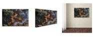 "Trademark Global Monica Fleet 'Buoyant' Canvas Art - 47"" x 30"""