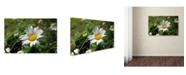 "Trademark Global Monica Fleet 'Flawless Imperfection' Canvas Art - 32"" x 22"""