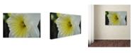 "Trademark Global Monica Fleet 'Vitality' Canvas Art - 32"" x 22"""