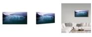"""Trademark Global Mitch Catanzaro 'Margerie Glacier' Canvas Art - 10"""" x 19"""""""