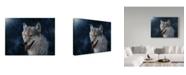 "Trademark Global Jeff Tift 'Wolf' Canvas Art - 14"" x 19"""