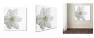 "Trademark Global Kurt Shaffer 'Paper White' Canvas Art - 14"" x 14"""
