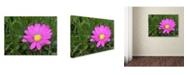 "Trademark Global Monica Fleet 'Alluring Vibrance' Canvas Art - 14"" x 19"""
