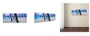 "Trademark Global David Evans 'Beach Palms-Maldives' Canvas Art - 16"" x 47"""