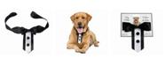 Lillian Rose Wedding Tuxedo Dog Collar