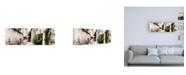 "Trademark Global Philippe Hugonnard France Provence 2 Street Scene Uzes Canvas Art - 36.5"" x 48"""