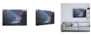 """Trademark Global Kurt Shaffer Photographs Approaching storm 2 Canvas Art - 27"""" x 33.5"""""""