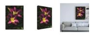 """Trademark Global Kurt Shaffer Photographs Pair of Blooming Daylilies Canvas Art - 19.5"""" x 26"""""""