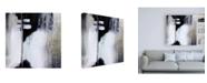 "Trademark Global Karen Hal Black and White Drama Canvas Art - 15.5"" x 21"""