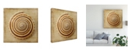 "Trademark Global Judy Stalus Sepia Shell V Canvas Art - 27"" x 33"""