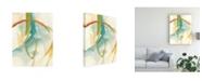 "Trademark Global June Erica Vess Vertigo I Canvas Art - 15"" x 20"""