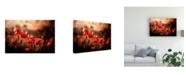 "Trademark Global Sahar Karami Morning Air Canvas Art - 20"" x 25"""