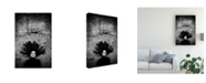 "Trademark Global Vedran Vidak Silvia Canvas Art - 15"" x 20"""