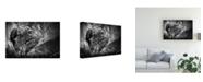 """Trademark Global Mathilde Guillemot Be Alert Canvas Art - 20"""" x 25"""""""