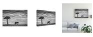 "Trademark Global Mario Moreno Elephant Landscape Canvas Art - 37"" x 49"""