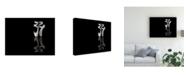 "Trademark Global Pauline Pentony Ma Ballet Shoes Canvas Art - 20"" x 25"""