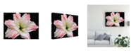 "Trademark Global Kurt Shaffer Double-Headed Amaryllis Canvas Art - 20"" x 25"""