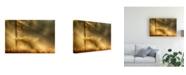 """Trademark Global Maurice Mies Autumn Light Struck Canvas Art - 20"""" x 25"""""""