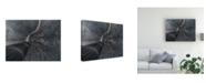 "Trademark Global Stan Huang Dive Into the Matrix Canvas Art - 20"" x 25"""