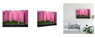 "Trademark Global Tetsuya Hashimoto The Pink Color World Canvas Art - 20"" x 25"""