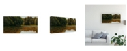 """Trademark Global Michael Budden Summer Light White Pine Rd Pond Canvas Art - 20"""" x 25"""""""