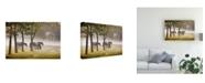 "Trademark Global Monte Nagler Horses in the Mist Kentucky Color Canvas Art - 15"" x 20"""