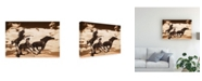 "Trademark Global Monte Nagler Cloud Chasers Phoenix Arizona Monotint Canvas Art - 15"" x 20"""
