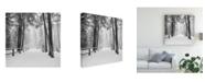"Trademark Global Monte Nagler Winters Path Canvas Art - 27"" x 33"""