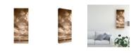 """Trademark Global Monte Nagler Lanse Bay Panorama Baraga Michigan Canvas Art - 15"""" x 20"""""""
