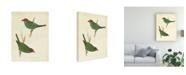 """Trademark Global Cassin Peruvian Tanager II Canvas Art - 37"""" x 49"""""""